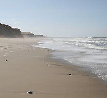 Torra Bay Skeleton Coast by kunene276