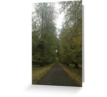 Drive through the trees Greeting Card