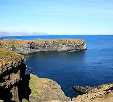 Cliffs at the sea. Iceland by PhotoStock-Isra