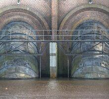 Water inlet by Peter Wiggerman