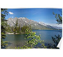 Grand Tetons Jenny Lake North View Poster