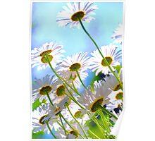 Joyful Spring.. Poster
