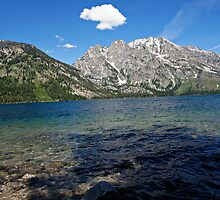 Grand Tetons Jenny Lake Northwest View by Michael Kirsh