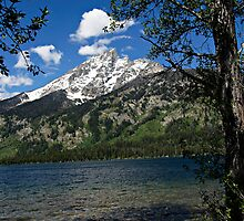 Grand Tetons Mountain and Jenny Lake by Michael Kirsh
