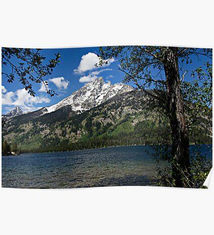Grand Tetons Mountain and Jenny Lake Poster