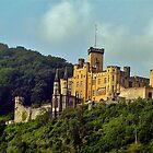 Unknown castle by Nancy Richard