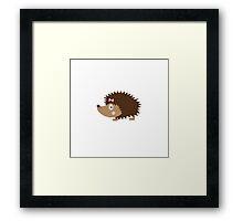Hedgehog female Framed Print