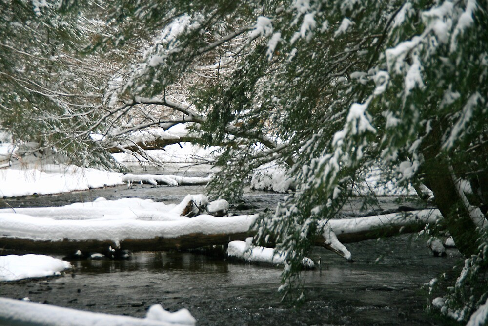 Snow Along The Creek Bed by Geno Rugh