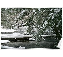 Snow Along The Creek Bed Poster