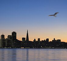 San Francisco - The Magic City by David Denny