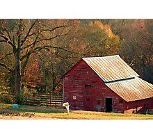 Berryvine Barn Fall Photographic Print