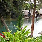 Vanuatu 2012 by Marcia Luly