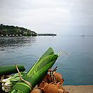 Vanuatu Food by Marcia Luly