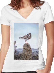 Ocean Seabird Peace Women's Fitted V-Neck T-Shirt