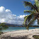 Vanuatu Palm by Marcia Luly