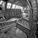 Londons History by Steven Powell