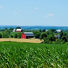 Farm in PA by Nancy Aranda