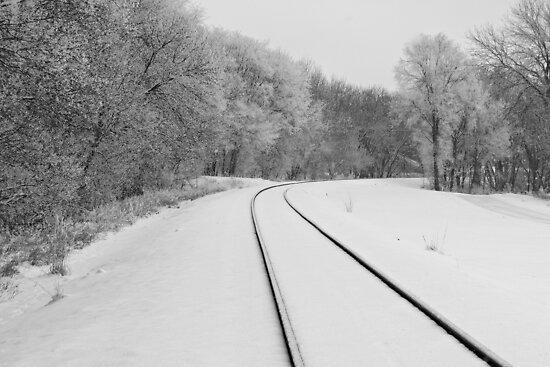 Snow Tracks by Greg Belfrage