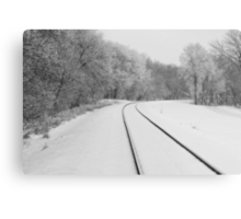 Snow Tracks Metal Print