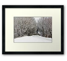 Trestle in the Trees Framed Print