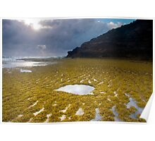 Sunbeam on a Rockpool Poster