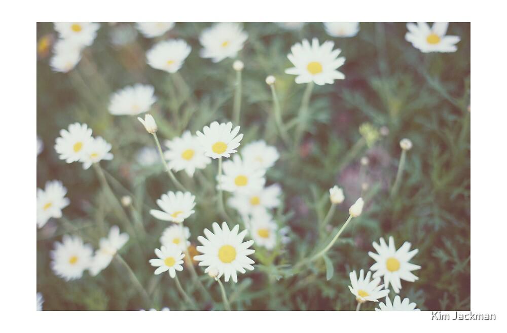 daisy by Kim Jackman