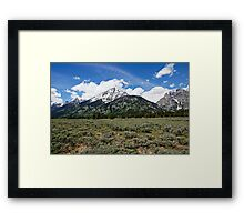 Grand Tetons and Brush Framed Print