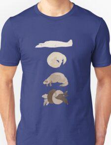 Chart of ferret sleep positions T-Shirt
