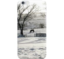 Morning Snow iPhone Case/Skin