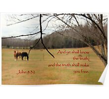 And ye shall know the truth. . . Poster