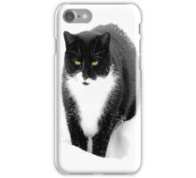 Felix in Snow iPhone Case/Skin
