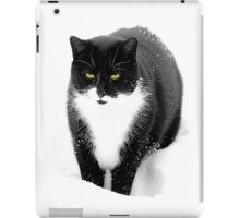 Felix in Snow iPad Case/Skin