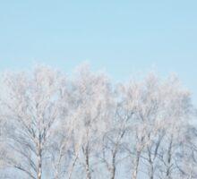 White Trees Sticker