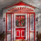 Door - Winter - Christmas kitty by Mike  Savad
