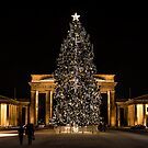Christmas tree in Brandenburg gate by pahas