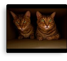 Max and Leo Canvas Print