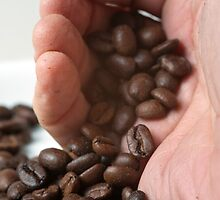 hand pouring out roasted Coffee Beans by PhotoStock-Isra