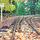 Belgrave Puffing Billy Railway Track by yewkwang