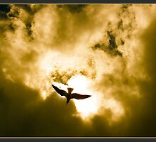 Golden Flight 2012 by CrismanArt
