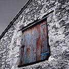 The Door by Steven Powell