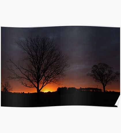 Silhouettes At Sunrise Poster