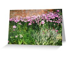 Corner of a cottage garden Greeting Card
