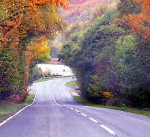 On the road by dombrown