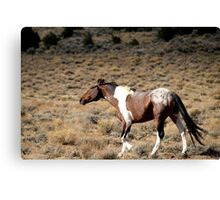 Attitude,Virginia City Highlands,Virginia City,Nevada USA Canvas Print