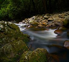 Down river by Liam Robinson