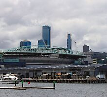 Etihad Stadium from Docklands by Pauline Tims