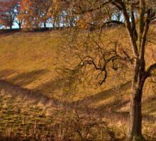 Autumnal colours at Thixen Dale Sticker