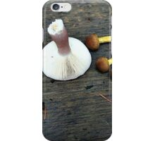 Collecting Mushrooms iPhone Case/Skin