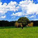 Swirling Clouds by Bill Colman