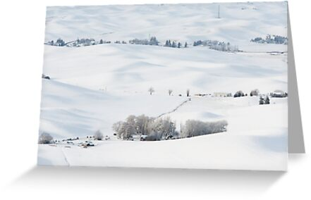 Winter's Rest in the Palouse by Jim Stiles